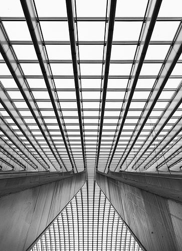 Line Composition Design : Brady digi elements of design